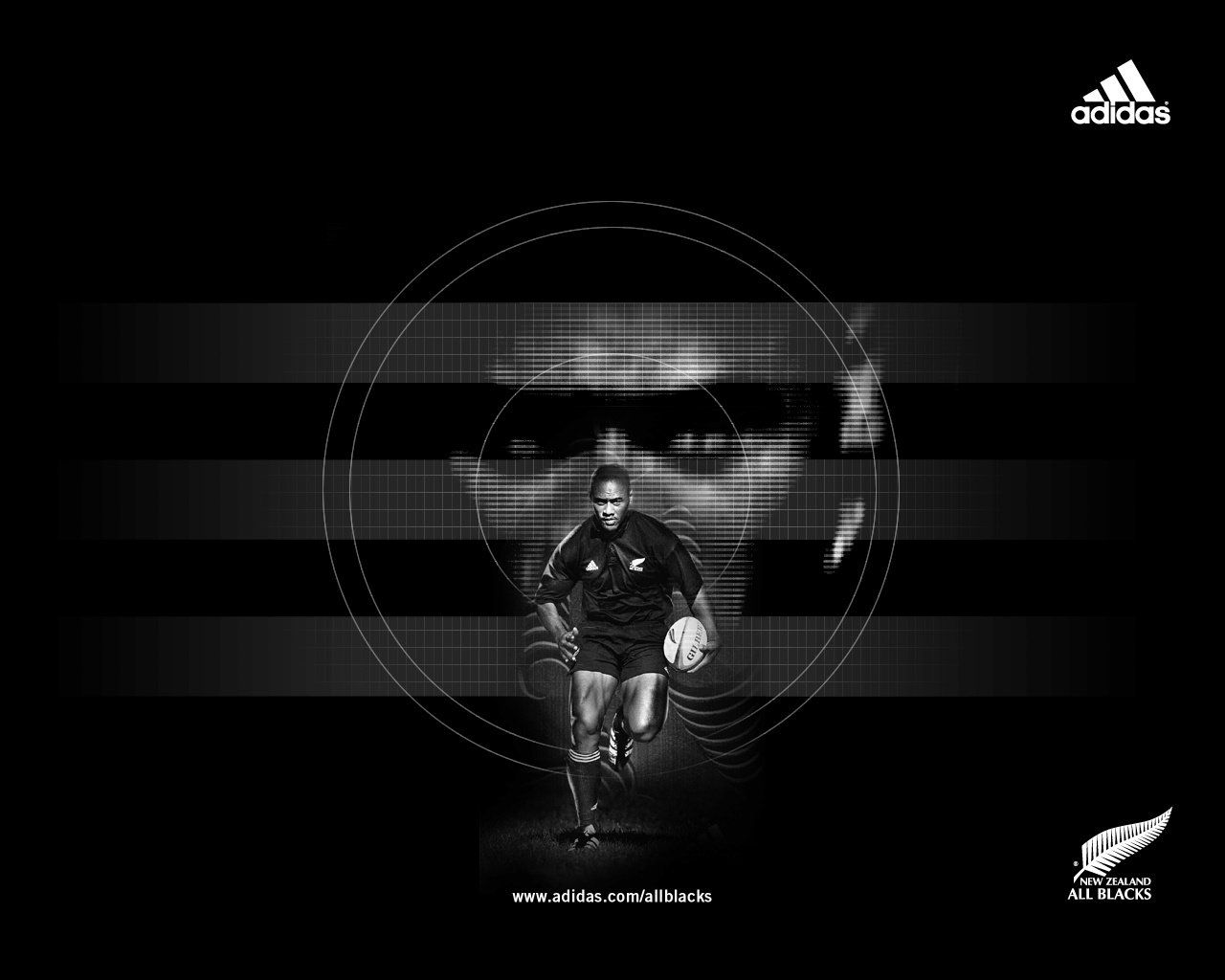 Reni S Blog Rugby Wallpapers
