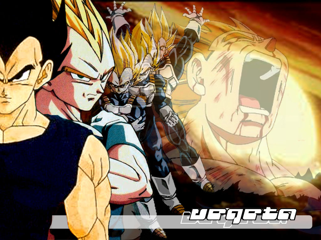 Dragonball Z : wallpaper DBZ